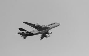Wallpaper flight, the plane, Qantas, A380