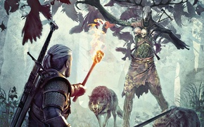 Picture forest, wolf, skull, the Witcher, The Witcher 3, Wild Hunt