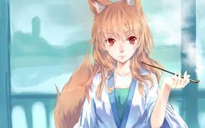 Picture girl, smoke, tube, anime, art, tail, ears, hankon