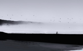Picture minimalism, sea, people, birds, fog, landscape