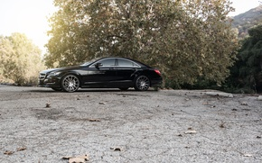 Picture black, side, black, Mercedes Benz, Mercedes, CLS550