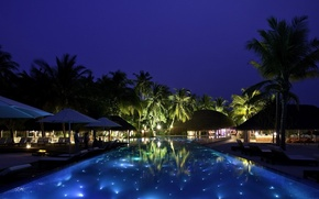 Picture night, palm trees, pool, resort