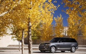 Picture autumn, Parking, Range Rover