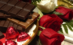 Picture roses, Chocolate, water drops, tray