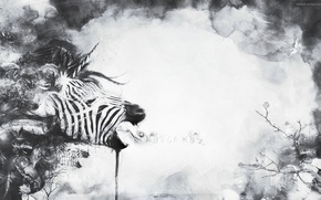 Wallpaper abstraction, plant, Zebra, unicorn