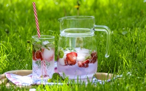 Picture ice, grass, glass, strawberry, drink, pitcher, lemonade