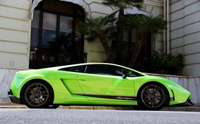 Picture green, palm trees, green, the building, Lamborghini, gallardo, Lamborghini, building, LP570-4, superleggera, palm
