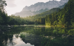 Wallpaper forest, mountains, nature, lake