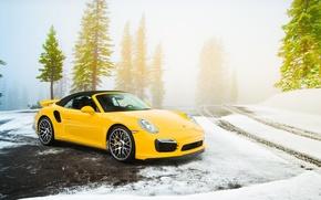 Picture Road, Yellow, Porsche, Snow, Spruce, Porsche, Supercar, Snow, Yellow, Road, Cabriolet, Supercar, 991, Turbo S, …