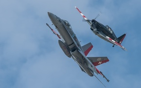 Picture flight, fighters, Hornet, CF-18, Morko-Morane
