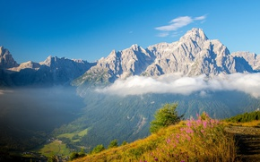 Picture the sky, grass, clouds, flowers, mountains, rocks, height, trail, valley, Alps, Italy, Sunny, hill, The …