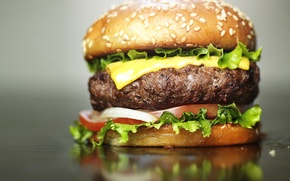 Picture bread, cheese, hamburger, meat, burger