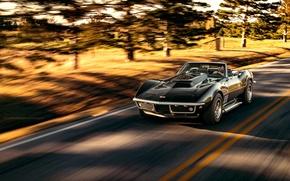 Picture Corvette, Chevrolet, black, Stingray, Nick Stephens Photography