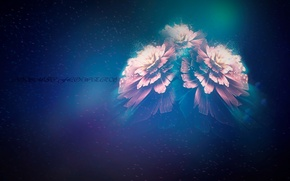 Picture color, nebula, dream, Flower, Particles, Cosmic, cosmic flowers, Vortex, 3цветка