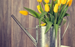 Picture tree, spring, yellow, tulips, lake, wood, flowers, tulips