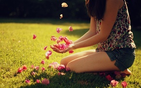 Wallpaper summer, girl, the sun, rays, light, background, mood, Wallpaper, pictures, petals, day, wallpapers