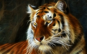 Picture tiger, airbrushing