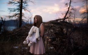 Picture forest, girl, toy, dress, Lichon