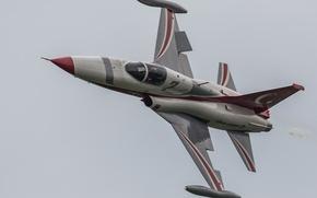 Wallpaper easy, flight, fighter, Northrop F-5, multipurpose