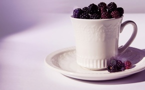 Picture berries, Cup, white, saucer, BlackBerry