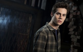 Picture movie, guy, actor, Thomas, the cub, The Maze Runner, The maze runner, Dylan O'brien, teen …