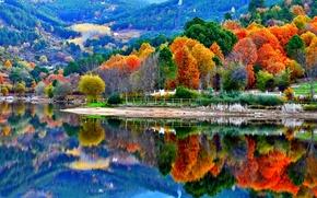 Picture autumn, trees, mountains, lake, slope