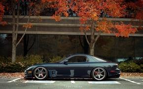 Picture autumn, Mazda, autumn, Mazda, RX7, te37