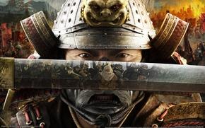 Picture Total War, Shogun, Shogun 2, Katana