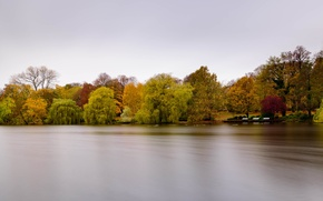 Picture trees, park, lake