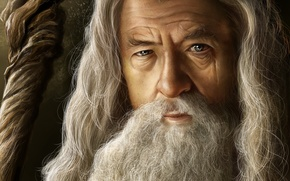 Picture grey, the Lord of the rings, art, MAG, the old man, staff, beard, lord of …