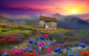 Picture the sun, landscape, flowers, mountains, house