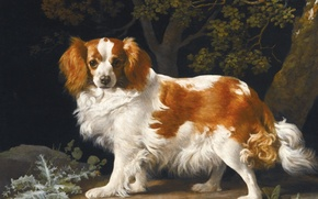 Picture painting, Spaniel, George Stubbs