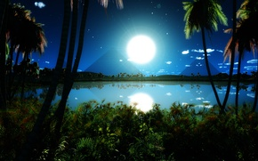 Picture the sky, grass, water, clouds, lake, reflection, palm trees, thickets, pyramid, night at the pyramids