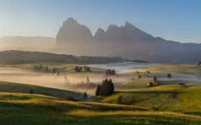 Picture summer, mountains, fog, morning, haze, meadows