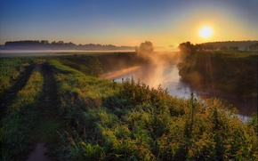 Picture road, the sun, sunset, nature, fog, river, photo, dawn