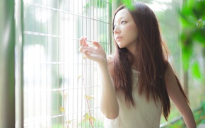 Picture girl, light, mood, Asian