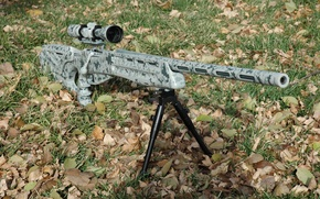 Picture grass, leaves, sight, rifle, sniper, optical, fry