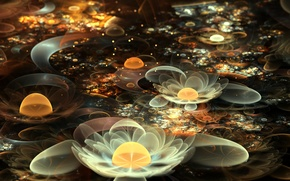 Picture flowers, abstraction, Lily, fractal, white, water lilies