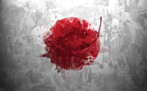 Wallpaper flag, the sun, japan, round, squirt