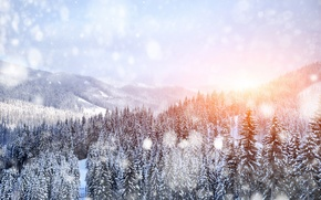 Picture winter, snow, trees, landscape, mountains, nature