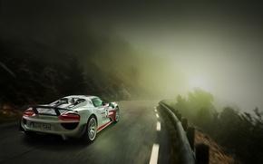 Picture road, fog, supercar, in motion, spyder, joshua singh, porsche 918