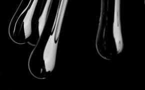 Wallpaper glass, contrast, vase