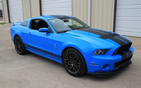 Picture Mustang, Shelby, GT500, Cobra, SVT