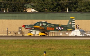Picture the plane, easy, the airfield, the rise, Airplane N38X, quadruple, Grumman AA-5