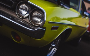 Picture classic, Dodge Challenger, the front, Dodge Chelenzher