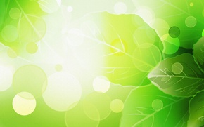 Picture Leaves, Summer, Green, Rendering