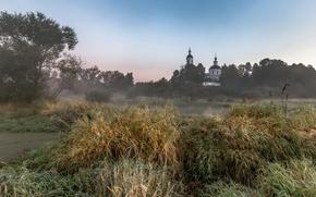 Picture field, landscape, fog, temple