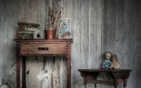 Picture toys, furniture, books