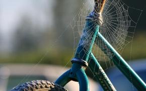 Picture web, 158, Bike