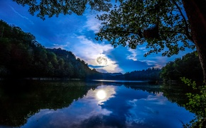 Picture forest, the sky, clouds, light, trees, night, reflection, river, the moon, Germany, Mainz